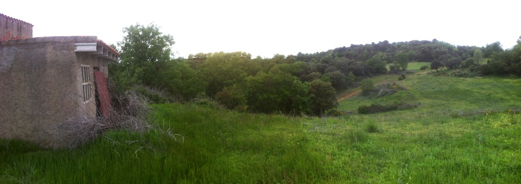 Panorama finca 06