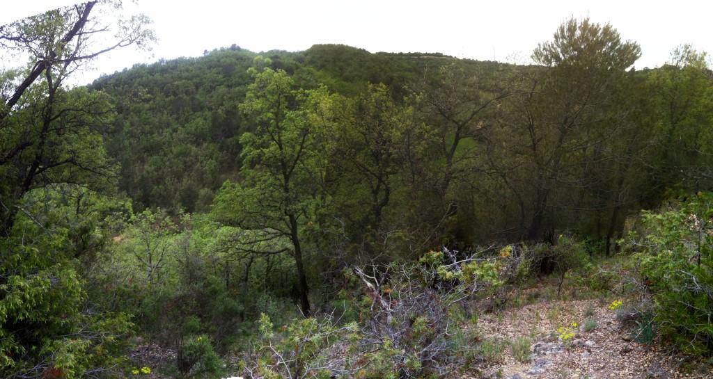 Panorama finca 09