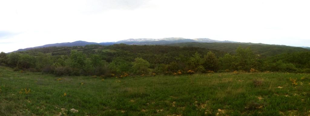 Panorama finca 11
